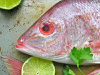 Smoked Snapper with Lemon Couscous Recipe